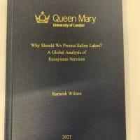 Binding for dissertation london essay multiculturalism england